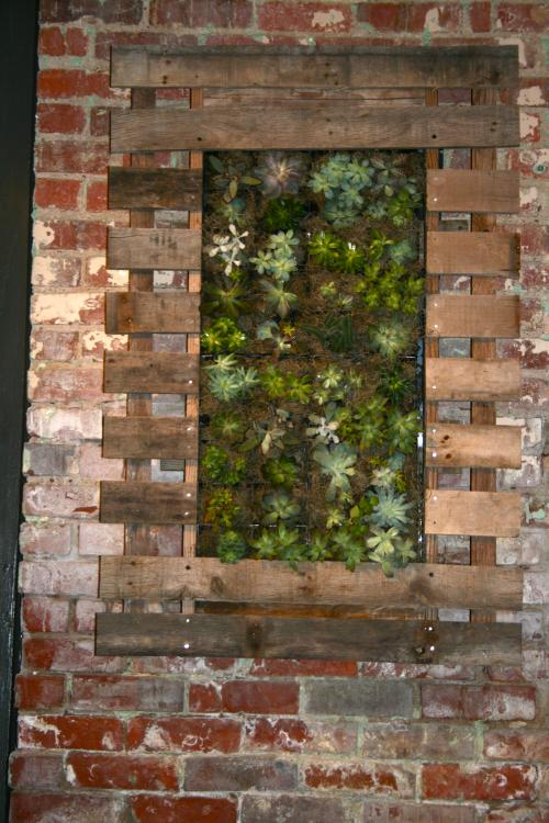 New Mexican Restaurant Opened Dec 2012 In A Historic Renovated Building On  The Canal In Downtown Richmond. Succulent Vertical Garden Panels Framed By  ...